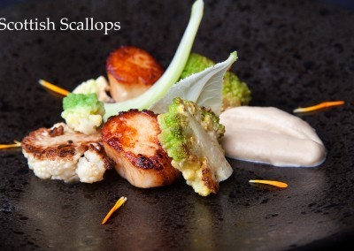Scottish Scallops