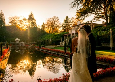 Garden-Wedding-Sunset -  David Wheeler Photography