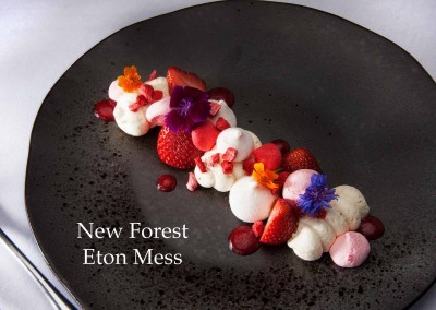 New Forest Eton Mess