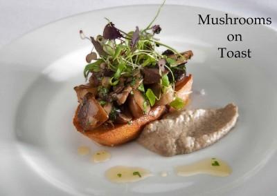 New Forest mushrooms on toast